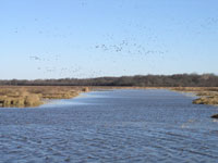 Waterfowl stream NRCS